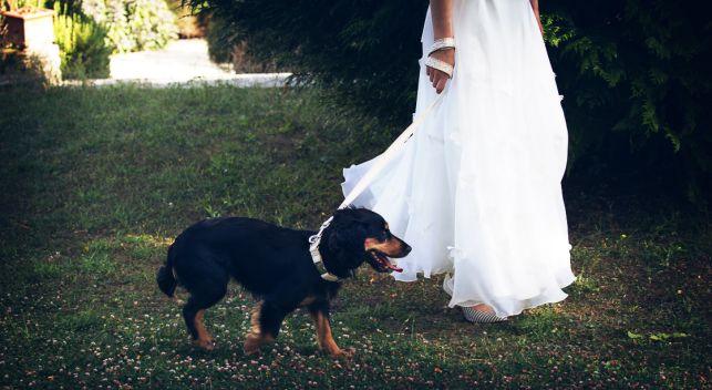 weddingfrance-91